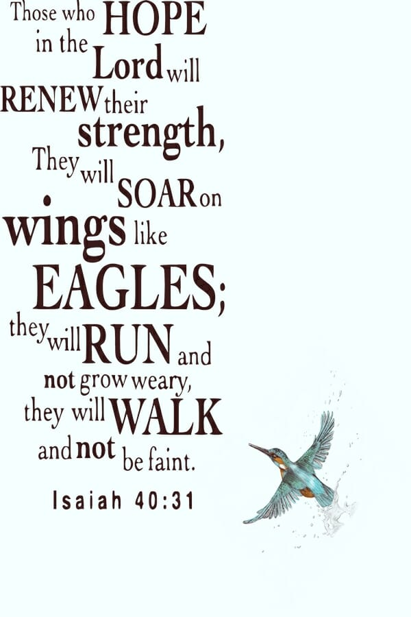 Soar-like-an-eagle-Christian-faith-design-features-text-and-hummingbird-600x900-72dpi