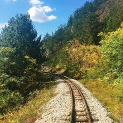 gods-creation-traversing-with-trains-in fall