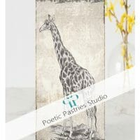 illustrated_sepia_giraffe_happy_birthday_card-rb14be2faf9bf4239809c039b5a014fed_t0wza_1024
